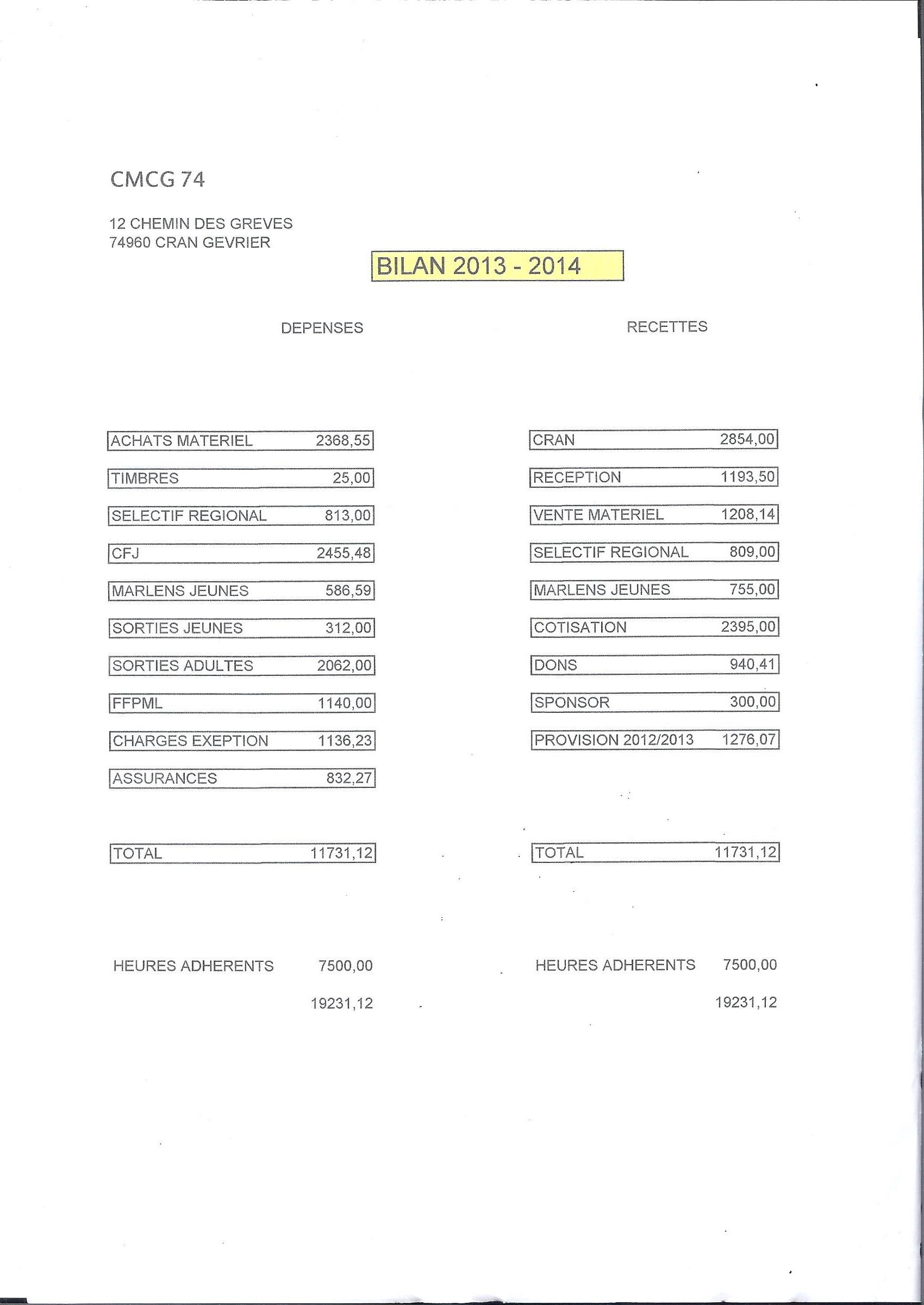 bilan financier 001